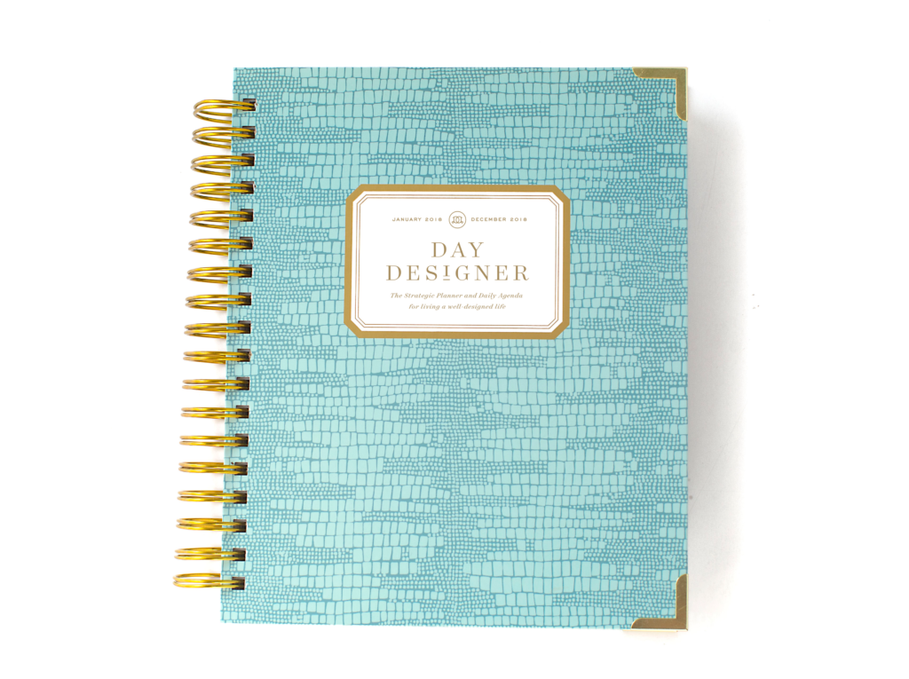 Day Designer Flagship Edition | 2018 Daily Planner | Mint Lizard